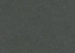 Grey-Moss
